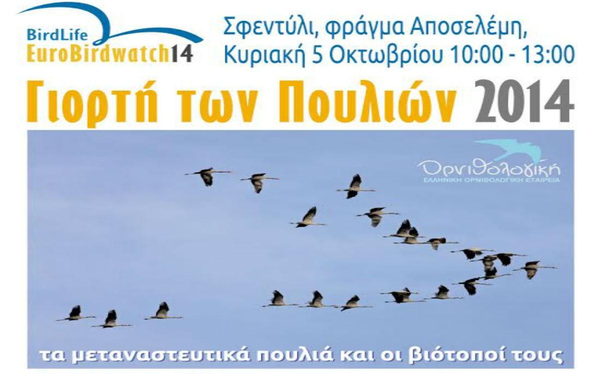 Γιορτή των Πουλιών 2014